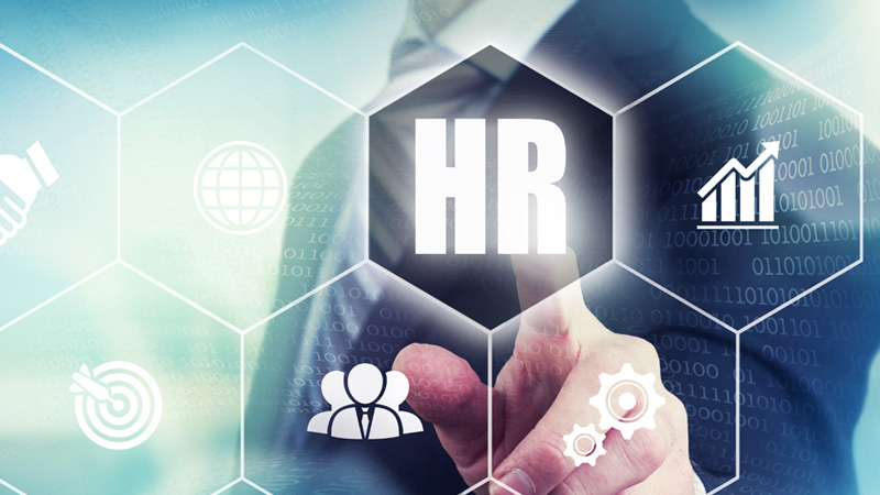 Best HRM Software For Your Small Business!